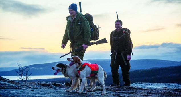 Hunder og folk på jakt
