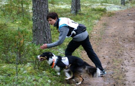 Nordisk mesterskap, brukshund, Finnland 2