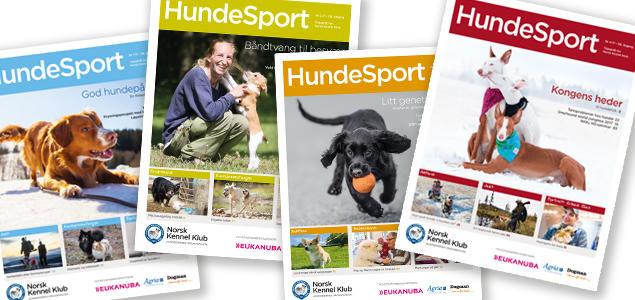 Hundesport 2017