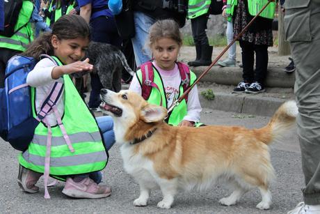 Aktivitetsdag Lusetjern skole
