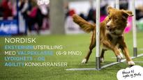 NKK Kristiansand