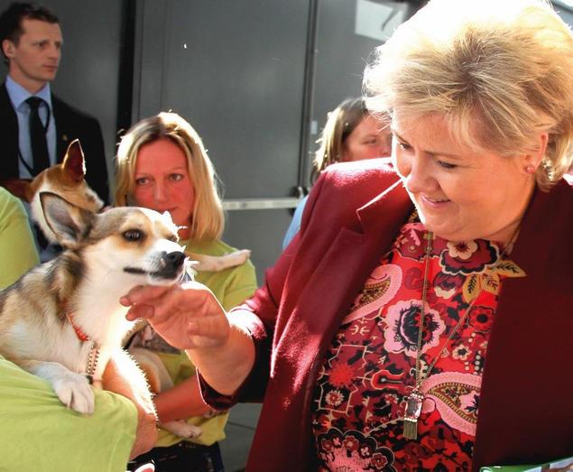 Erna Solberg besøkte Dogs4All i 2015