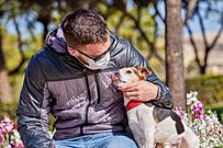 Hund og korona