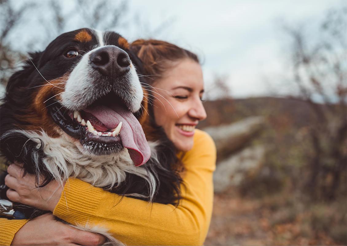 Dame klemmer hund