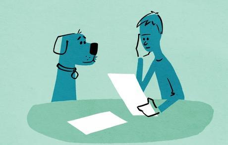Kjøp av hund - Hvordan skrive en god kontrakt?